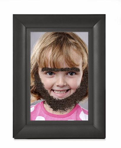 Fuzzy Face Photo Frame Wooly Willy Design Connection Inc Kansas City Interior Designer
