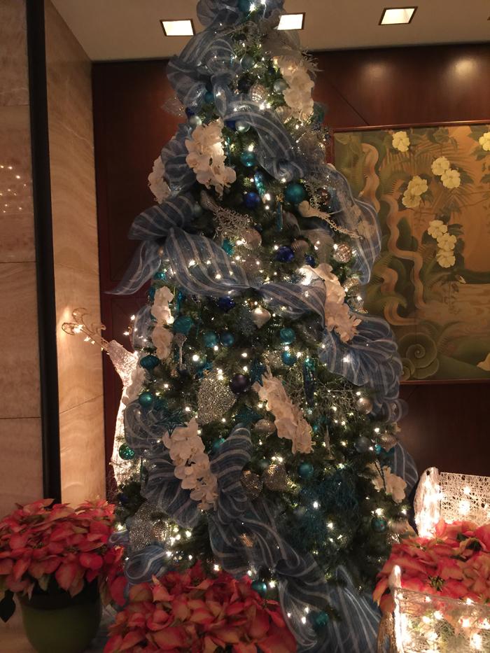 Hawaii Christmas Tree